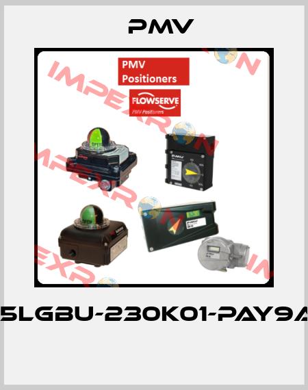 Pmv-(IPP5LGBU-230K01-PAY9A-3Z  price